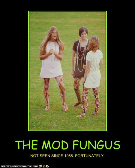 fungus,tights,print,fashion,hippies,mods