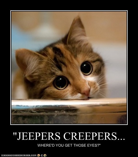 """JEEPERS CREEPERS... WHERE'D YOU GET THOSE EYES?"""