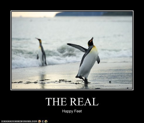 THE REAL Happy Feet
