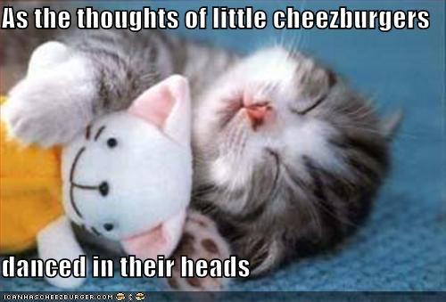 cheezburgers,dreams,kitten,lolcats,lolkittehs,nom nom nom,sleeping,snorgle