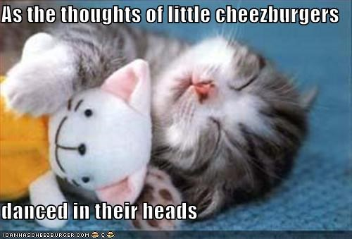 cheezburgers dreams kitten lolcats lolkittehs nom nom nom sleeping snorgle - 667728640