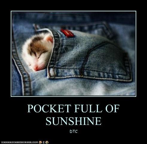 POCKET FULL OF SUNSHINE DTC