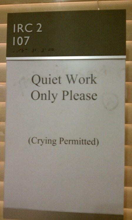 grad school crying permitted quiet work library - 6677640192
