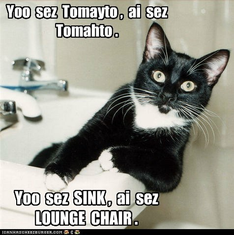 tomato sink lounge chair captions Cats bathroom - 6677693952