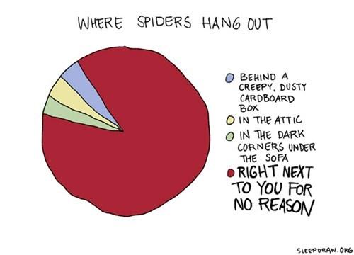 spiders arachnophobia Pie Chart - 6678508800