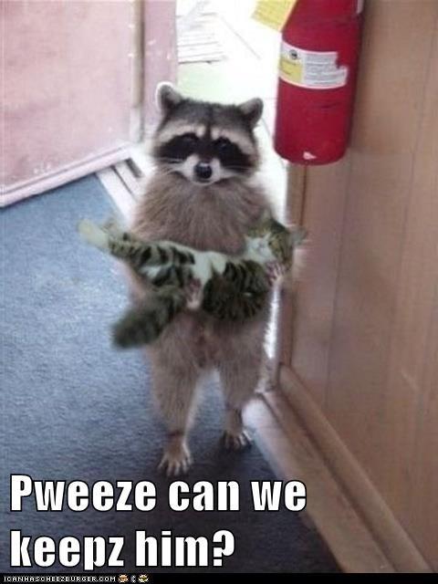 Pweeze can we keepz him?