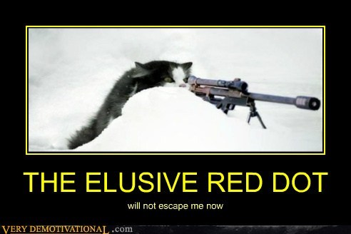 THE ELUSIVE RED DOT will not escape me now