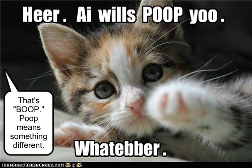 "Heer . Ai wills POOP yoo . That's ""BOOP."" Poop means something different. Whatebber ."