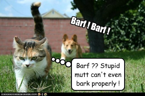 Barf ! Barf ! Barf ?? Stupid mutt can't even bark properly !