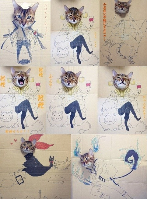 cardboard cat costumes,Cats,costume,cardboard boxes,boxes,hallomeme,anime,ao no exorcist,naruto,kikis-delivery-service,halloween