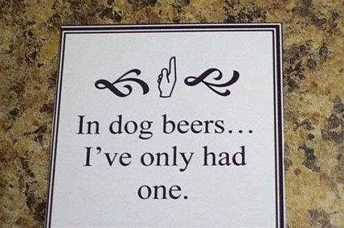 math adds up dog beers had one - 6681427968