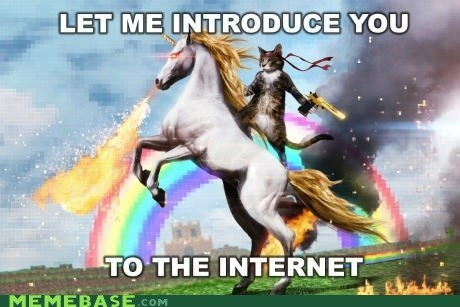 cat unicorn rainbow drugz internet fire - 6681555712