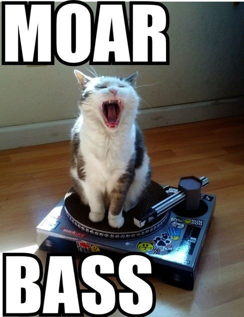 bass,djs,Music,turntables,Cats,moar,yelling,captions