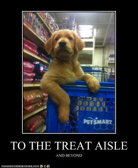 TO THE TREAT AISLE AND BEYOND
