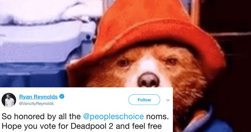 twitter paddington argument social media ridiculous ryan reynolds funny - 6682373