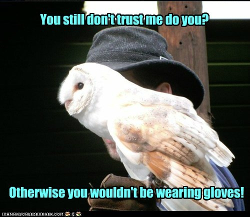 nervous,gloves,distrust,Owl,talons