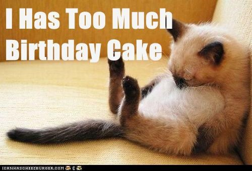 Awesome I Has Too Much Birthday Cake Lolcats Lol Cat Memes Funny Personalised Birthday Cards Veneteletsinfo