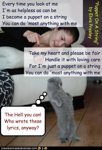 Puppet On A String By Elvis Presley Lolcats Lol Cat Memes