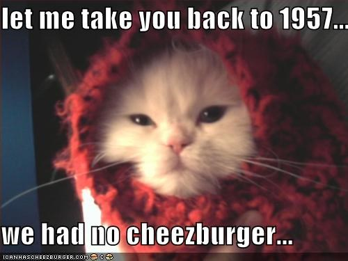 Cheezburger Image 668375296