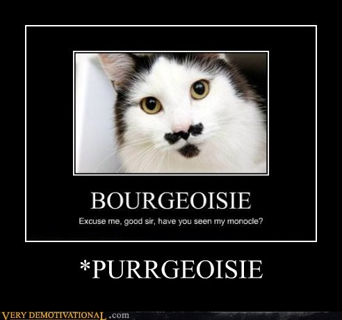 pun bourgeoisie cat moustache - 6684407808