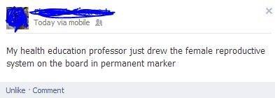 professor teacher - 6684726016