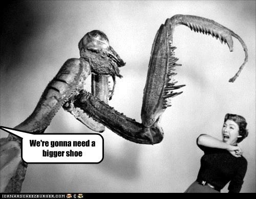 scary woman giant scream praying mantis - 6684879616