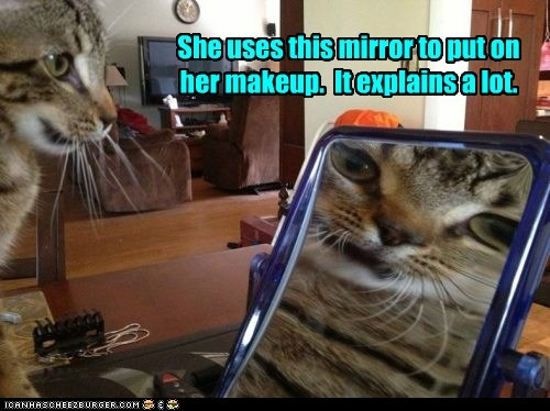 makeup,beauty,ugly,mirror,explains,Cats,captions