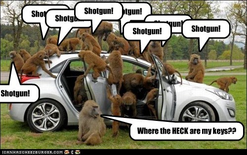 keys,monkeys,car,driving,shotgun,family