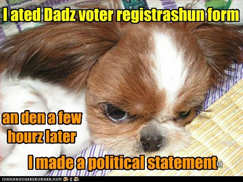 I ated Dadz voter registrashun form an den a few hourz later I made a political statement