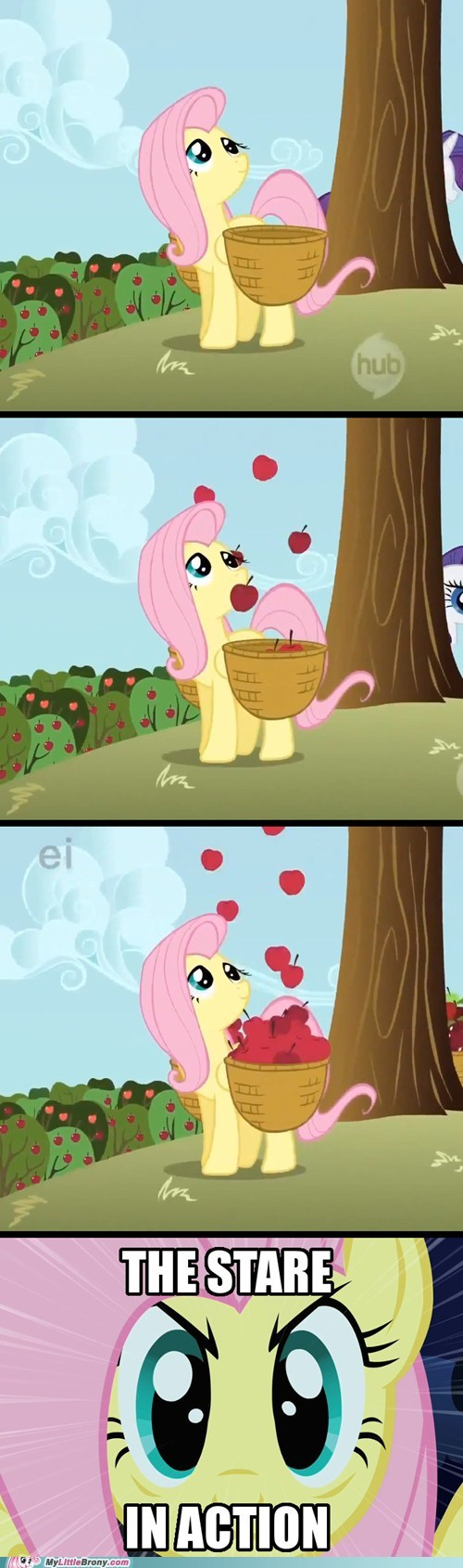 the stare comic fluttershy - 6685771264