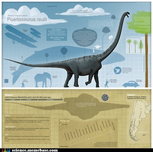 whale,dinosaur,biology,huge