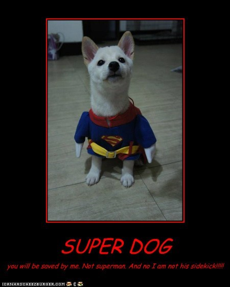 SUPER DOG you will be saved by me. Not superman. And no I am not his sidekick!!!!!
