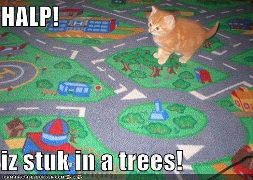 fire department kitten lolcats lolkittehs orange poison stuck tree - 668662016