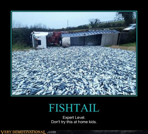 fish tail truck wtf - 6686941440