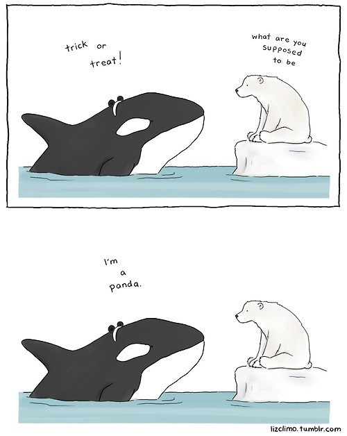 comic,halloween costumes,polar bear,killer whale,panda
