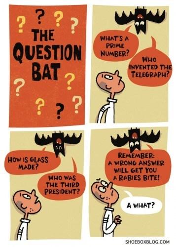 the question bat,rabies,bats,halloween
