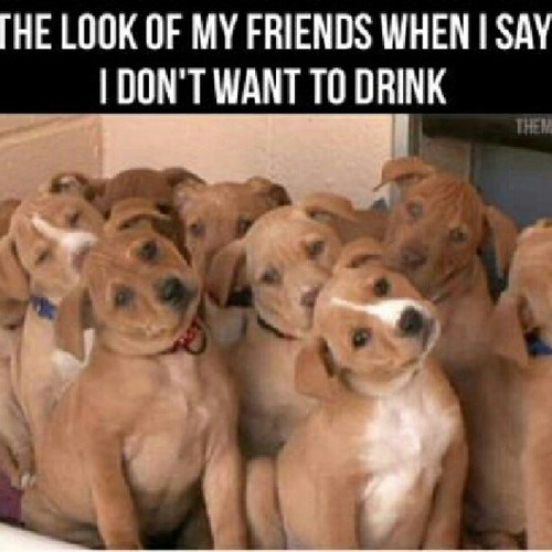 dont-want-to-drink friends weekends - 6687472640