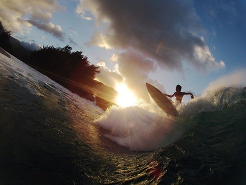 surfing,Hawaii,surf-s-up,waves
