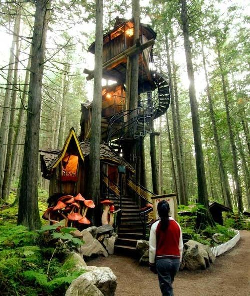 tree house Forest magical architecture design best of week Hall of Fame - 6688036608