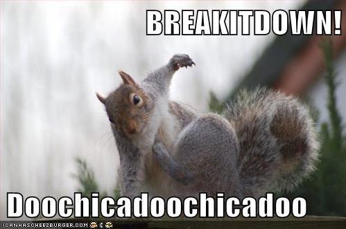 dancing break it down squirrel breakdancing - 6688326144