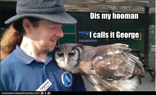 George,mine,human,Owl,hug