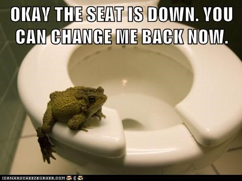 changed,the frog prince,seat,frog,toilet seat