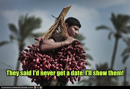 date pun ill-show-you harvest - 6690130176