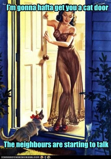 cat door cat neighbors visitor - 6691408896