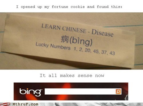 bing fortune cookie fortune chinese food - 6691554048