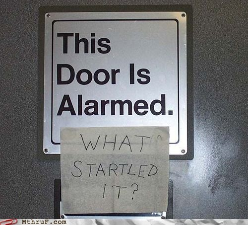 this door is alarmed what startled it