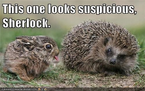sticking tongue out suspicious hedgehog Sherlock bunny Watson