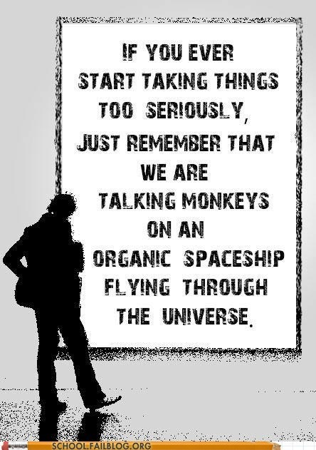zing,taking things seriously,monkeys,spaceship,the universe,science