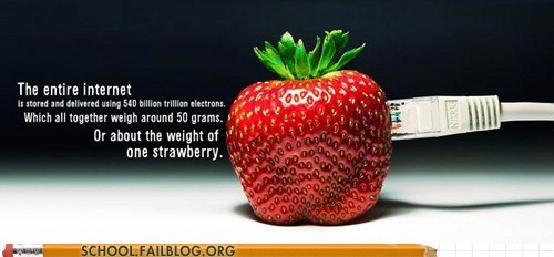 lols entire internet strawberry weight - 6691942400