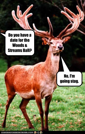 Cheezburger Image 6692047872